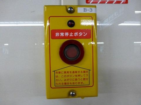 P1100059
