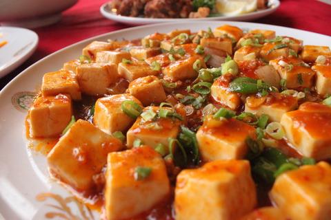 麻婆豆腐 (5)